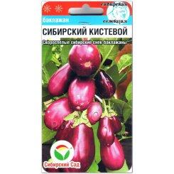 Баклажан Сибирский кистевой