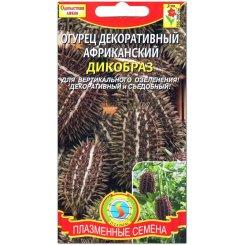 Огурец декоративный африканский Дикобраз