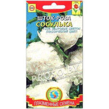 Шток-роза Сосулька