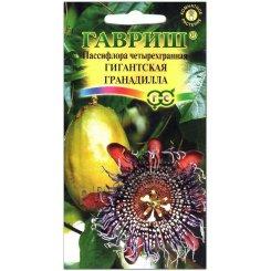 Пассифлора четырехгранная Гигантская гранадилла