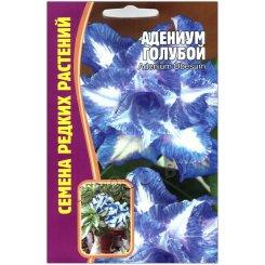 Адениум Голубой