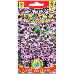 Мыльнянка базиликолистная Розовая лужайка