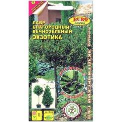 Лавр благородный вечнозеленая Экзотика