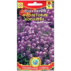 Лобулярия (алиссум) Фиолетовая королева