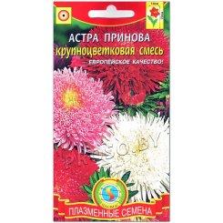 Астра крупноцветковая Принова, смесь