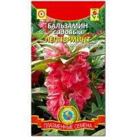 Бальзамин садовый Пепперминт