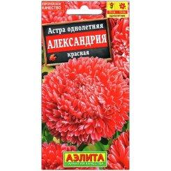 Астра Александрия красная