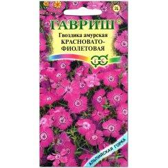 Гвоздика амурская Красновато-фиолетовая