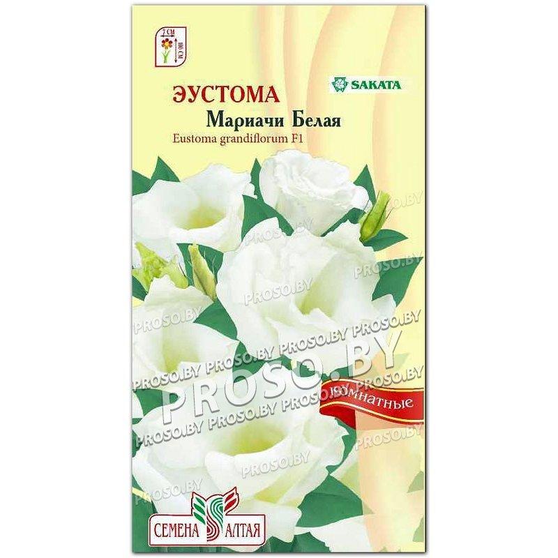 Купить семена комнатных растений почтой беларусь, заказ букет на свадьбу в самаре