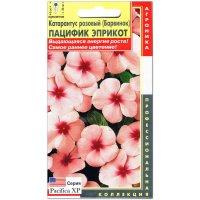 Катарантус розовый Пацифик эприкот