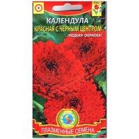 Календула Красная с черный центром