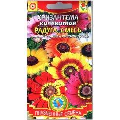 Хризантема килеватая Радуга, смесь