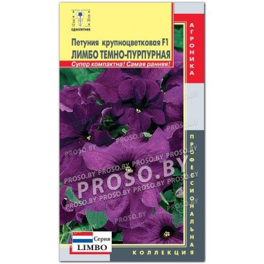 Петуния Лимбо Темно-пурпурная F1