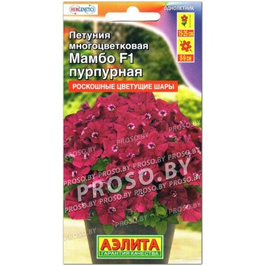 Петуния многоцветковая Мамбо пурпурная F1