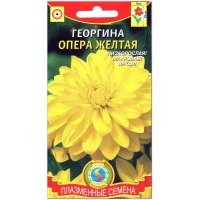 Георгина Опера желтая