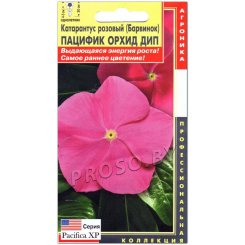 Катарантус розовый Пацифик орхид дип