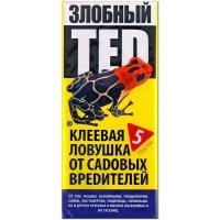 Злобный TED (клеевая ловушка от садовых вредителей), 5 шт.