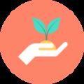 Удобрения и стимуляторы